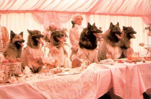 in-compagnia-dei-lupi-foto-dal-film-01_big