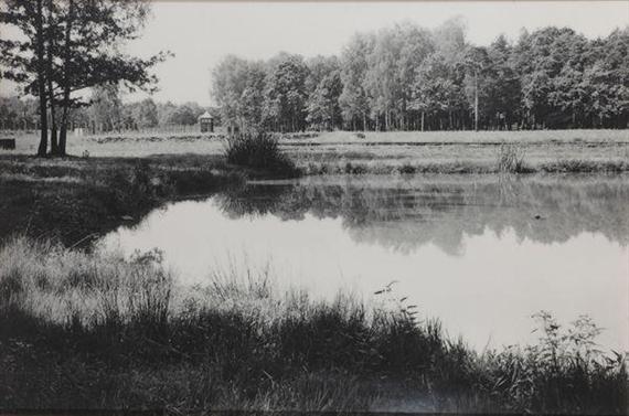 Polish Landscape, Auschwitz-Birkenau, di Simcha Shirman