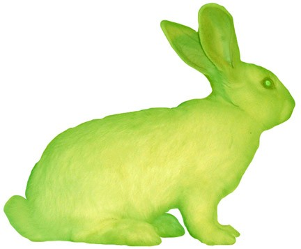Rabbit Alba